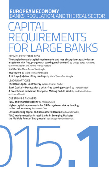Capital Requirements for Large Banks