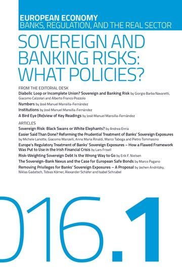 Sovereign and Banking Risks: What Policies?
